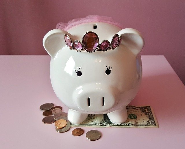 メスブタの貯金箱の画像